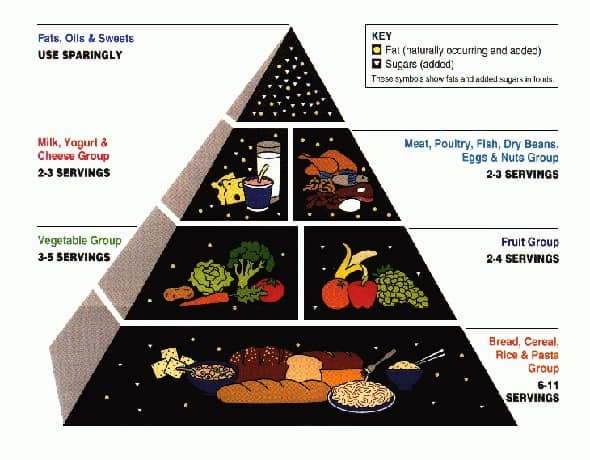 In 1992 the USDA launched the food pyramid, its first dietary recommendations imagery in that was shaped as a pyramid.