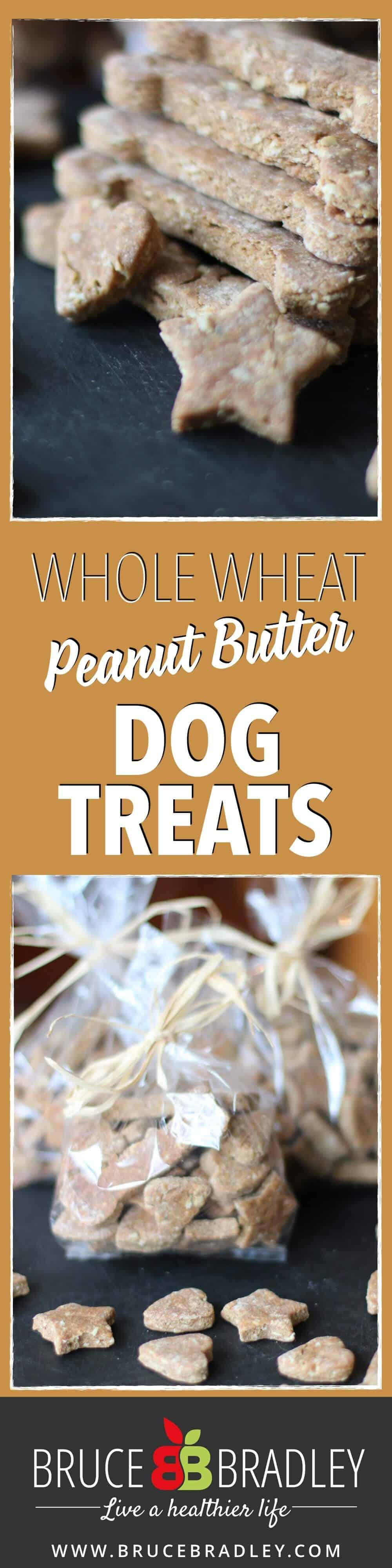 Peanut Butter Whole Wheat dog treats are a perfect way to give a gift to your friends or family members with dogs!
