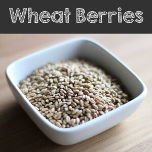 Wheat berry grain