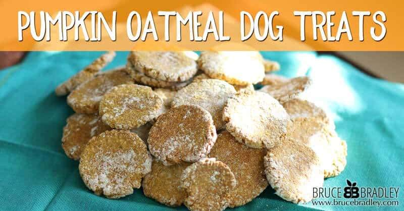 These pumpkin oatmeal dog treats are made from 100% real ingredients that your dog will love. They also make wonderful gifts for dog-loving friends!