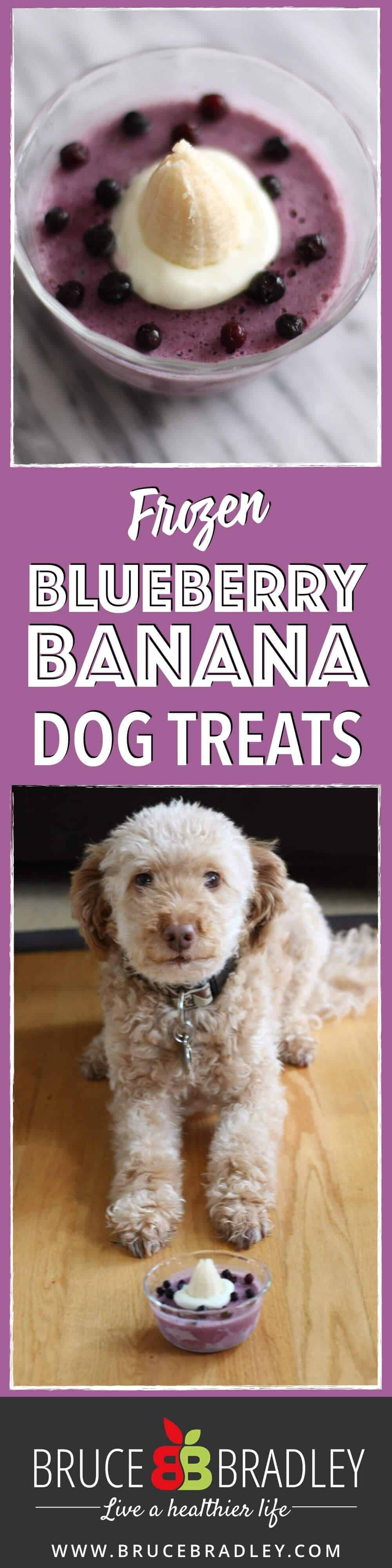 These three ingredient frozen dog treats are the perfect way to celebrate or reward your special pooch. Made with yogurt, blueberries, and a banana, you can whip these treats up in less than 5 minutes, freeze, and share!